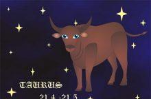 Draugystės horoskopas: kas artimiausias Jaučio sielai?