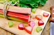 Pavasariui – gaivinanti rabarbarų rūgštelė <span style=color:red;>(receptai)</span>