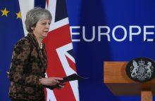 """D. Britanijai mažėja pasirinkimų dėl """"Brexit"""""""