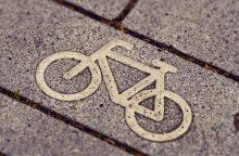 Olandijoje mokyklos dviračių stoginėje nušauta moksleivė