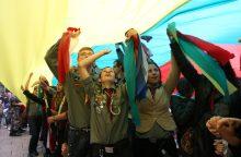 Skautai Rumšiškėse rengia svečių dieną