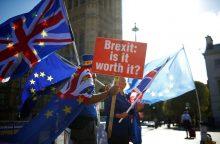 """Šaltinis: susitarimo dėl """"Brexit"""" iki lapkričio pasiekti nepavyks"""
