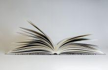 Išleista 11-os Kauno bienalės knyga: ką mums reiškia paminklas?