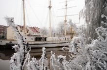 Skubėkime pasidžiaugti žiema