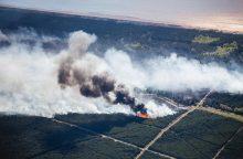 Sulaikytas miškus padeginėjęs piromanas: man tai teikia malonumą <span style=color:red;>(papildyta)</span>