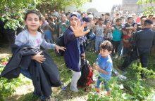 Uostamiestis pabėgėlių nedomina: šiemet atvyko vos šeši