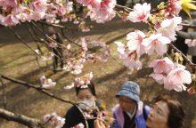 A. Gelūnas: Japonija išmokė apriboti savo ego