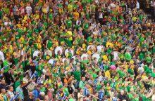 Užsienio lietuviai raginami nebijoti referendumo dėl dvigubos pilietybės