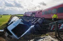 Nyderlanduose susidūrus traukiniui ir dviračiui žuvo keturi žmonės