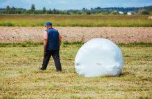 Nuo gamtos stichijos nukentėjusiems ūkininkams taikys lengvatas?