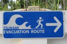 Prie Aliaskos įvykus žemės drebėjimui paskelbtas cunamių pavojus
