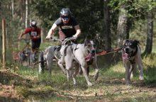 Jadagoniuose – vėl šunų lenktynės