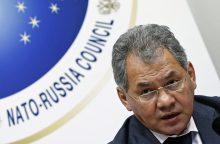 Aljanso pareigūnas: NATO lėktuvas nekėlė jokios grėsmės S. Šoigu lėktuvui