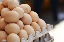 Danija rado daugiau užterštų kiaušinių
