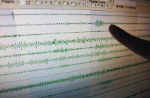 Netoli Indonezijos krantų įvyko stiprus žemės drebėjimas