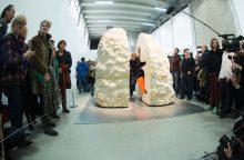 Prancūzų menininkas savaitei įsikalino akmens riedulyje