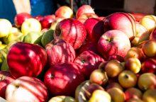 Ruduo – obuolių derliaus metas: pasigaminkite pusryčių desertą