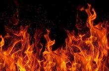 Gaisras Alytuje nusinešė motinos ir sūnaus gyvybę