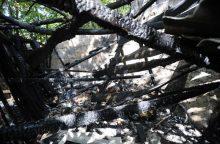 Tiria pavėsinės gaisrą, per kurį sudegė ir žoliapjovė, dviratis